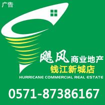 杭州飓风房地产代理有限公司(2店)